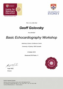 Echocardiography Certificate